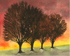 The Sunset Trees - Click to Enlarge